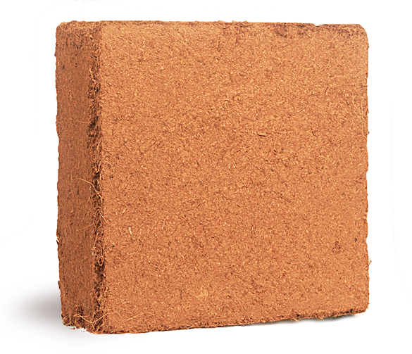 coco peat blocks - washed, unwashed, buffered